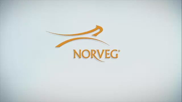 Norveg
